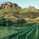 Stellenbosch Hotel Winelands Getaway Special